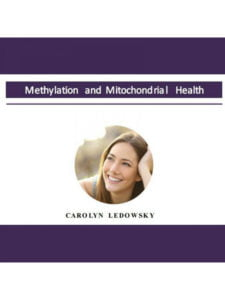 Methylation and Mitochondrial Health Presentation (audio only)