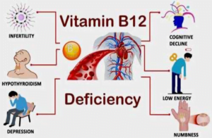 Vitamin B12 - The ever-important nutrient. What might your genetics tell you?