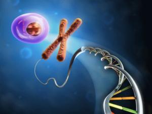 How to best understand your genetics