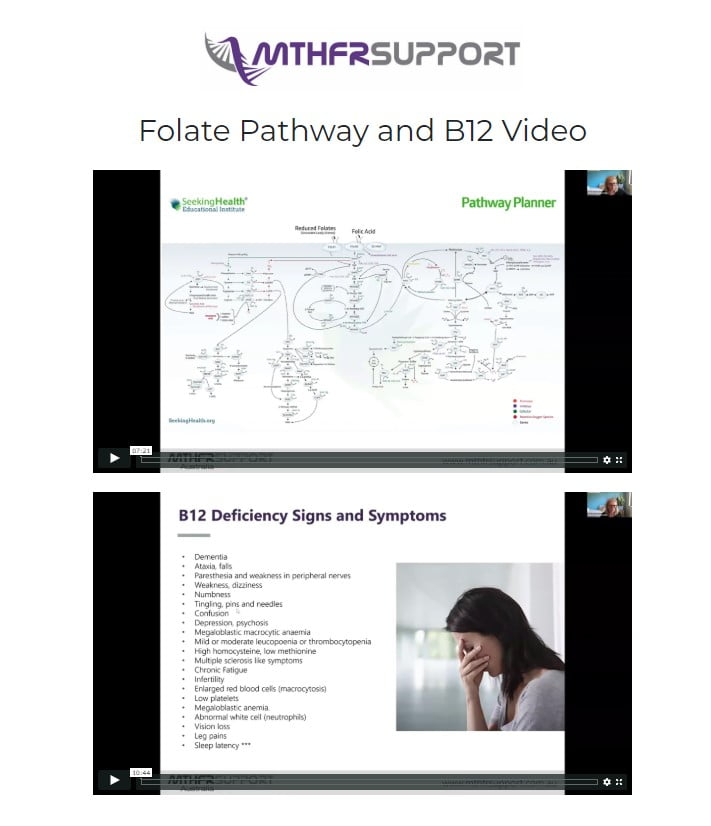 GET ACCESS TO THE 'THE FOLATE PATHWAY' AND 'ALL ABOUT VITAMIN B12' VIDEOS